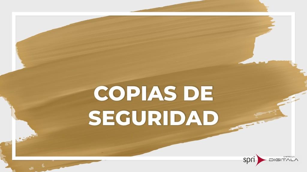 COPIAS DE SEGURIDAD