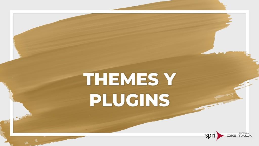 THEMES Y PLUGINS