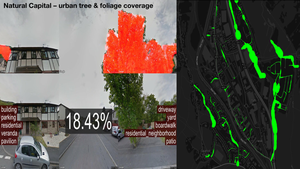 Mapping urban trees Natural Capital – urban tre...