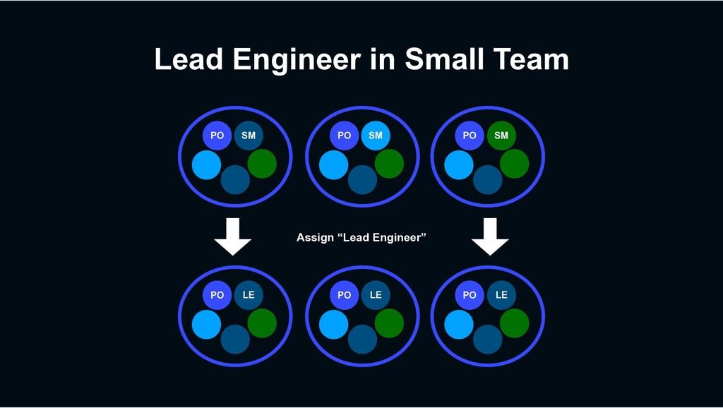 Lead Engineer in Small Team PO PO SM PO SM SM P...
