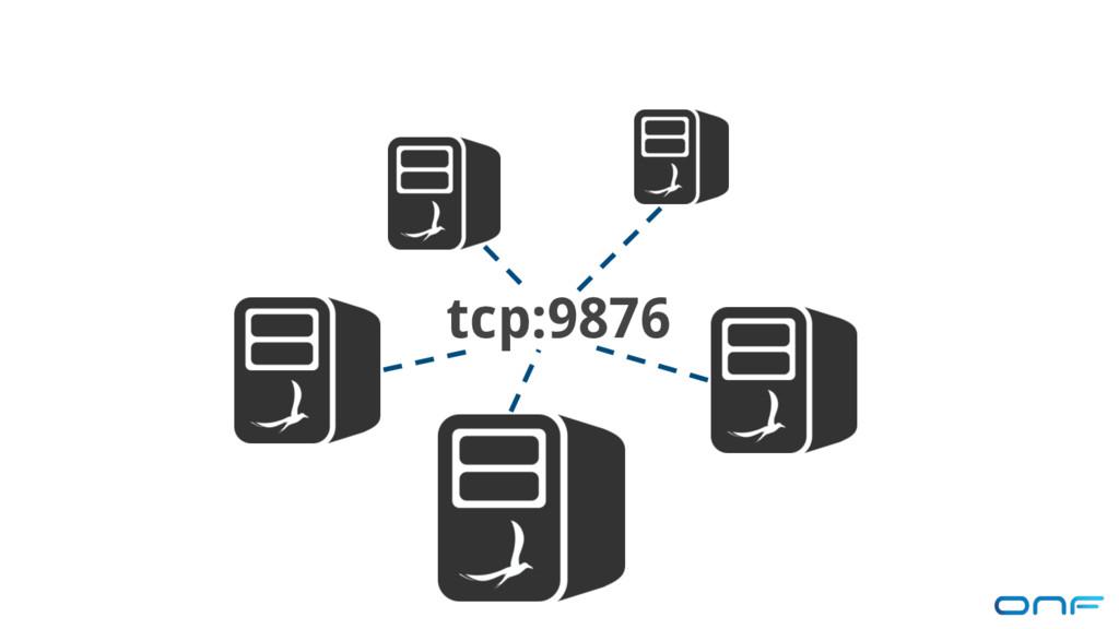 tcp:9876