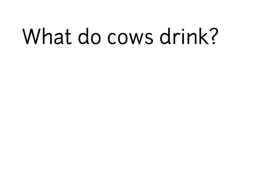 What do cows drink?