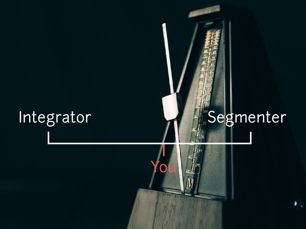 You Integrator Segmenter