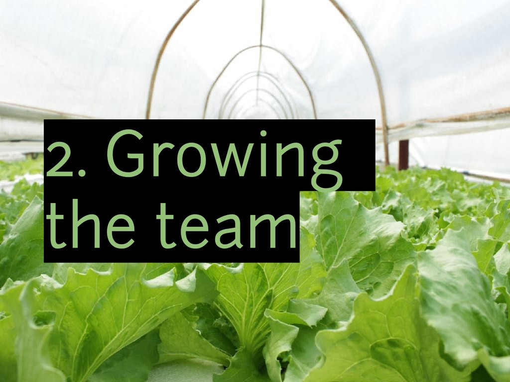 2. Growing the team