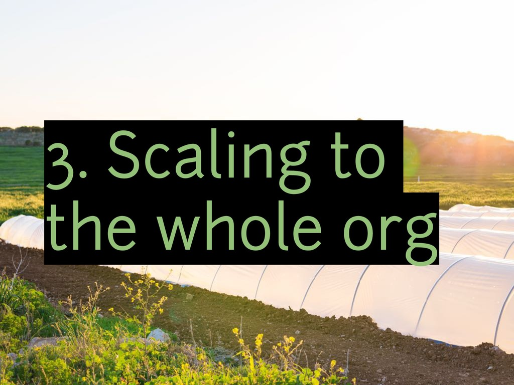 3. Scaling to the whole org
