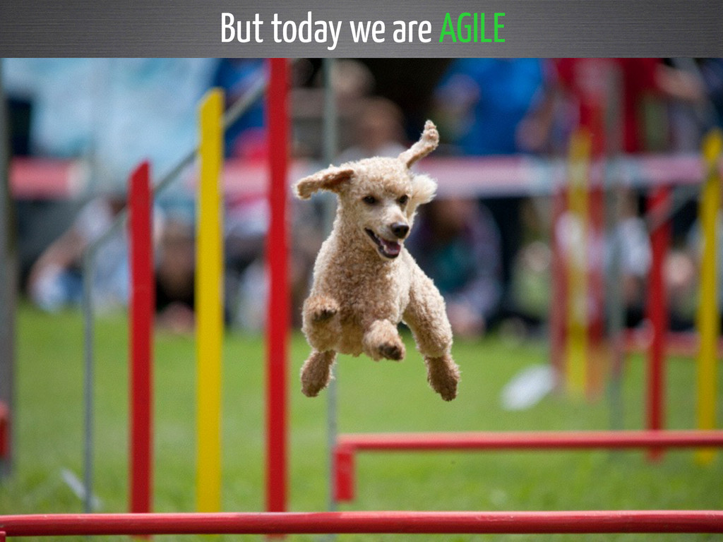But today we are AGILE