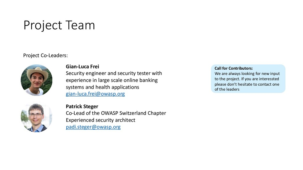 Project Team Project Co-Leaders: Patrick Steger...