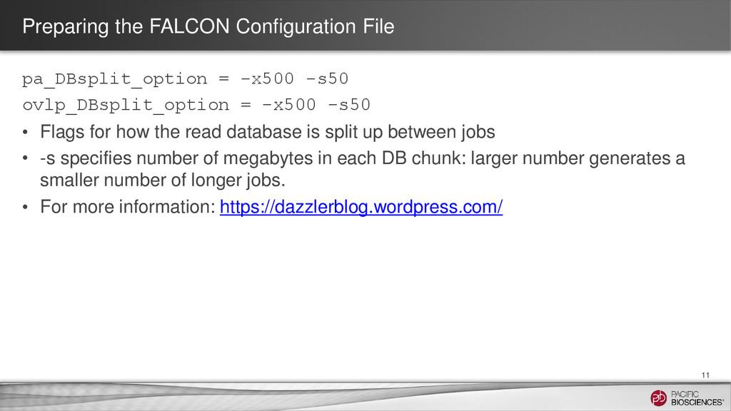 Preparing the FALCON Configuration File pa_DBsp...
