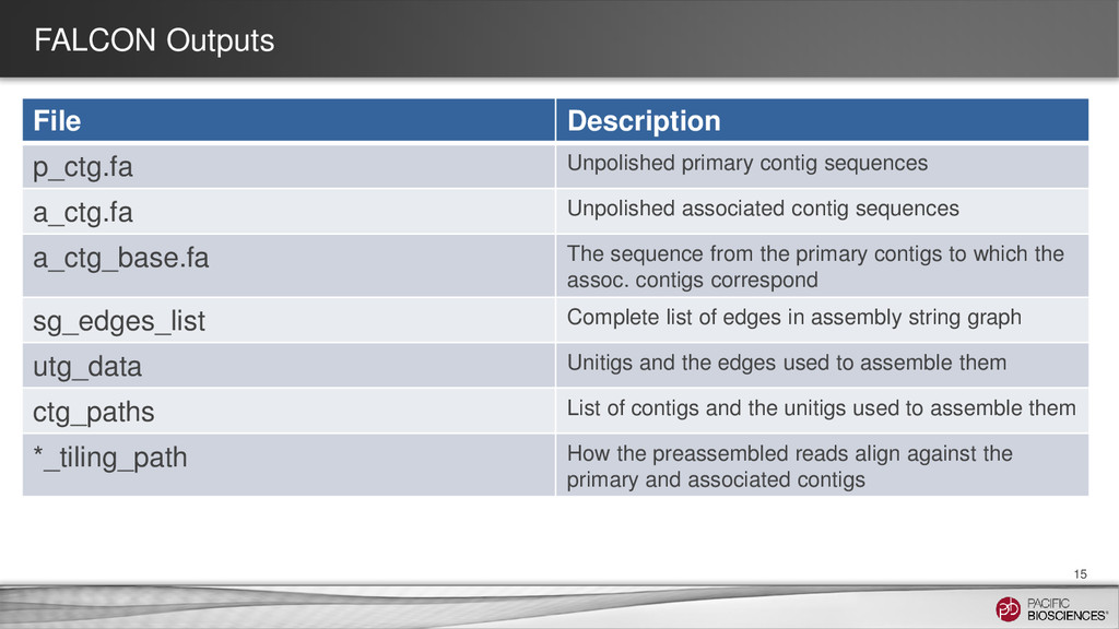 FALCON Outputs File Description p_ctg.fa Unpoli...