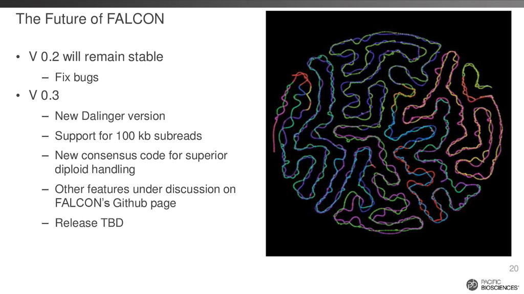 The Future of FALCON • V 0.2 will remain stable...