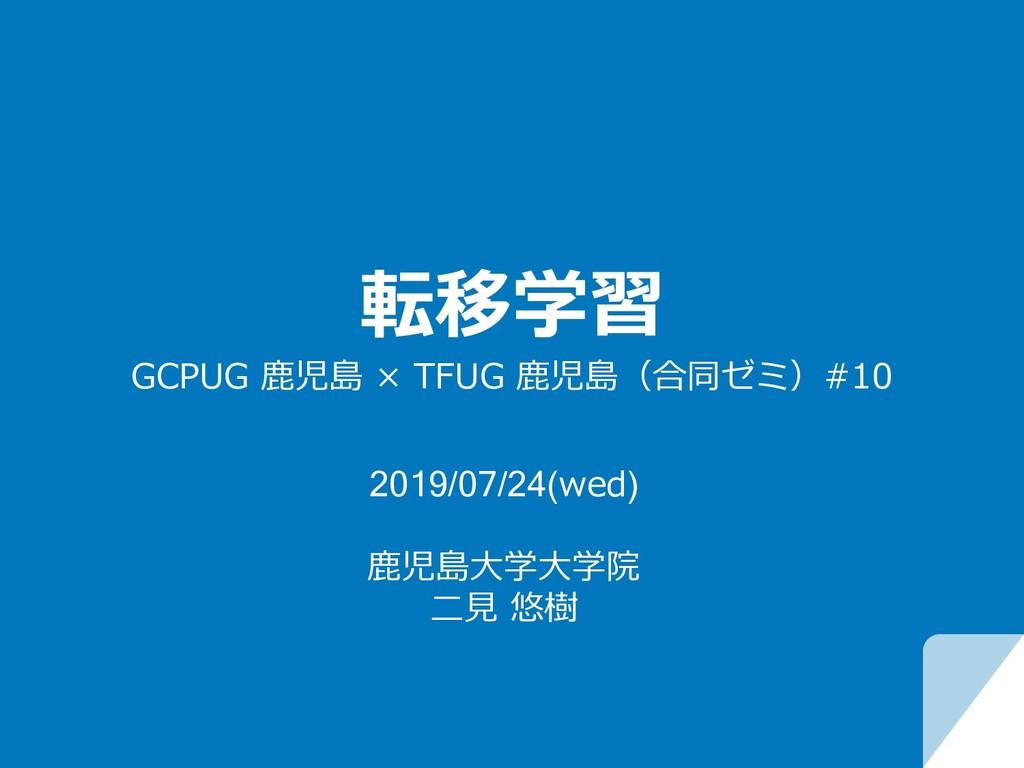 転移学習 GCPUG ⿅児島 × TFUG ⿅児島(合同ゼミ)#10 2019/07/24(w...