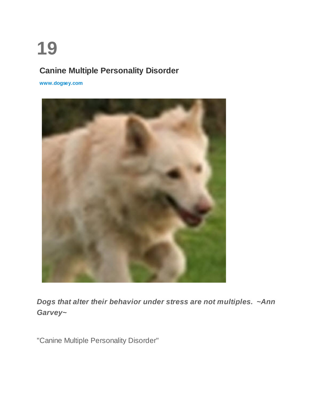 19 Canine Multiple Personality Disorder www.dog...