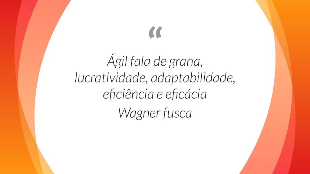 """ Ágil fala de grana, lucratividade, adaptabili..."