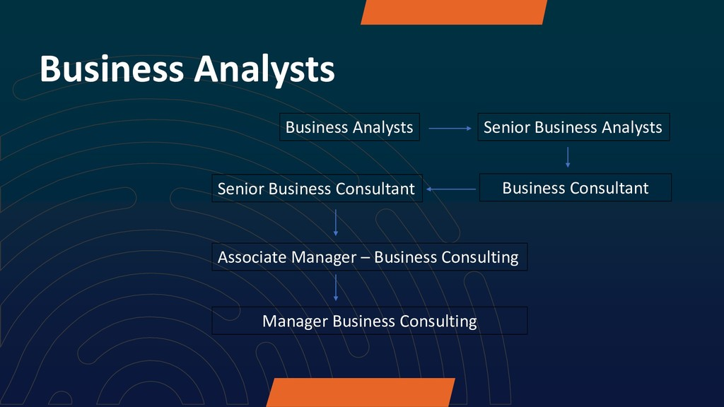 Business Analysts Business Analysts Senior Busi...