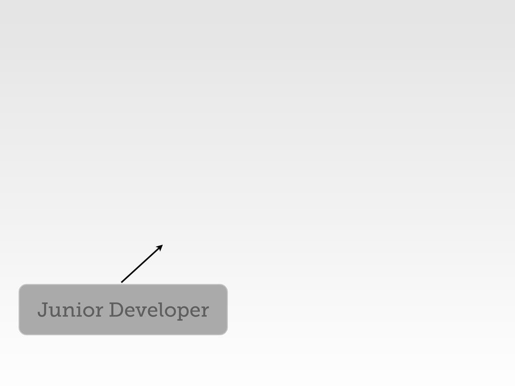 Junior Developer