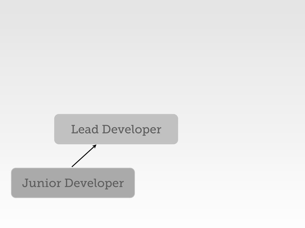 Junior Developer Lead Developer