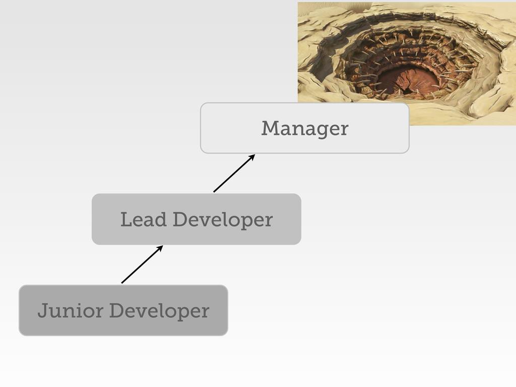 Junior Developer Lead Developer Manager