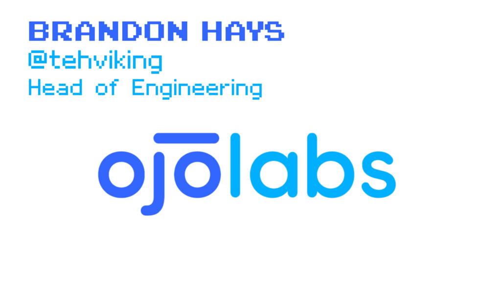 Brandon Hays Head of Engineering @tehviking