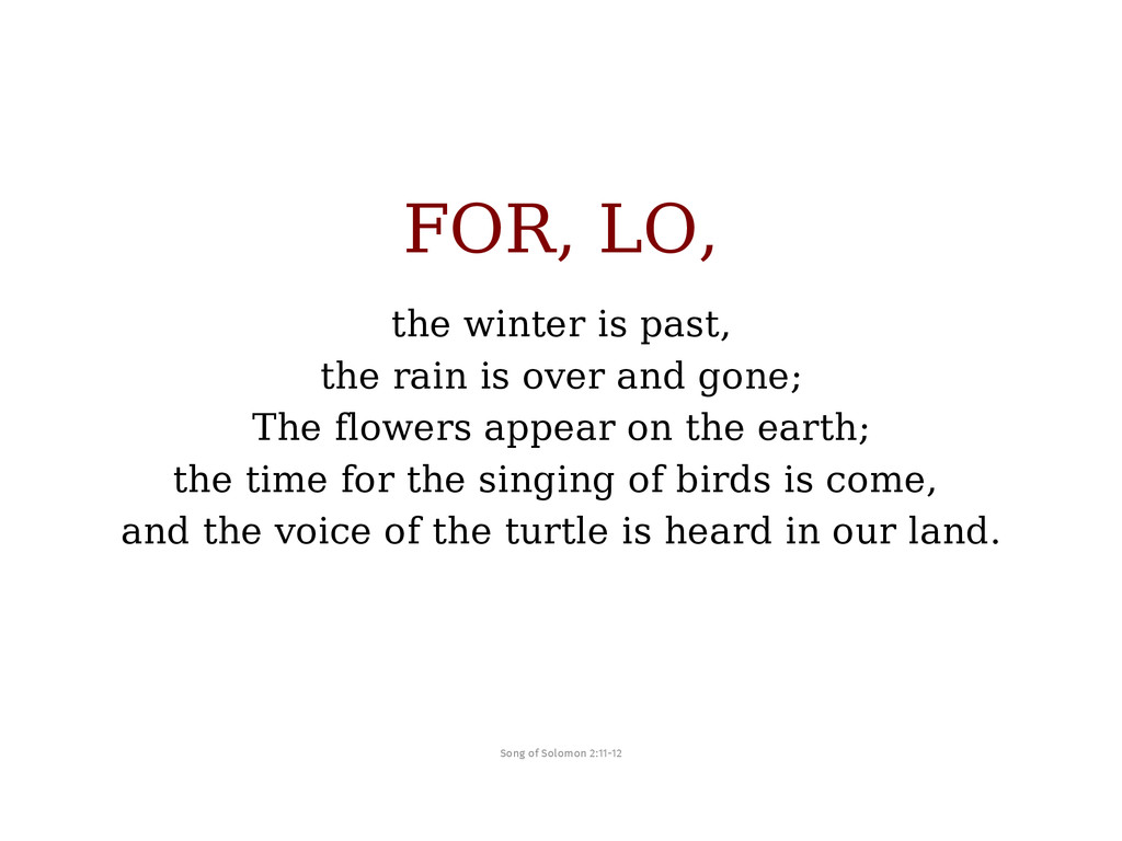 FOR, LO, the winter is past, the rain is over a...