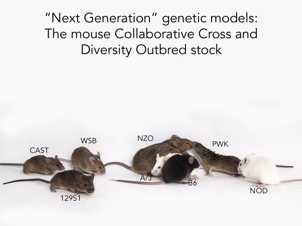 """Next Generation"" genetic models: The mouse Col..."