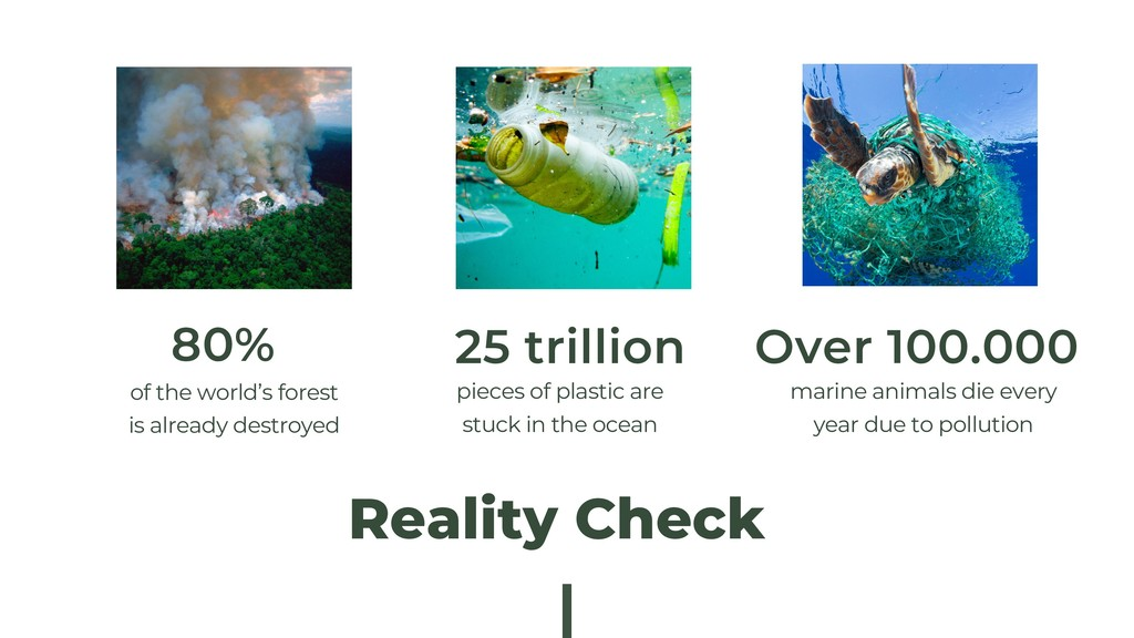 Reality Check of the world's forest is already ...