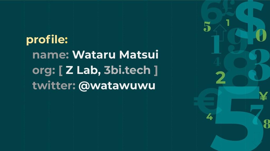 profile: name: Wataru Matsui org: [ Z Lab, 3bi.t...