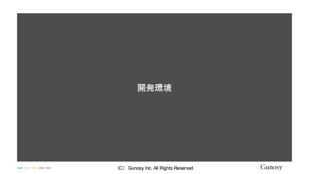 開発環境 (C) Gunosy Inc. All Rights Reserved.