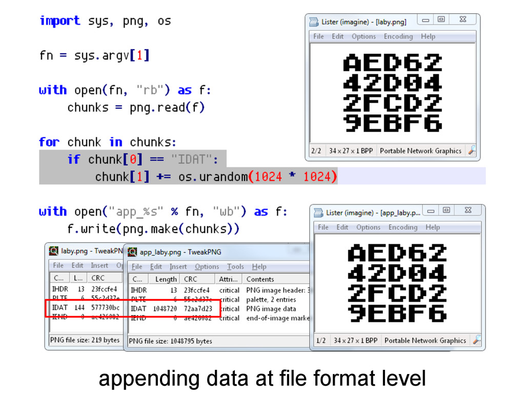 appending data at file format level