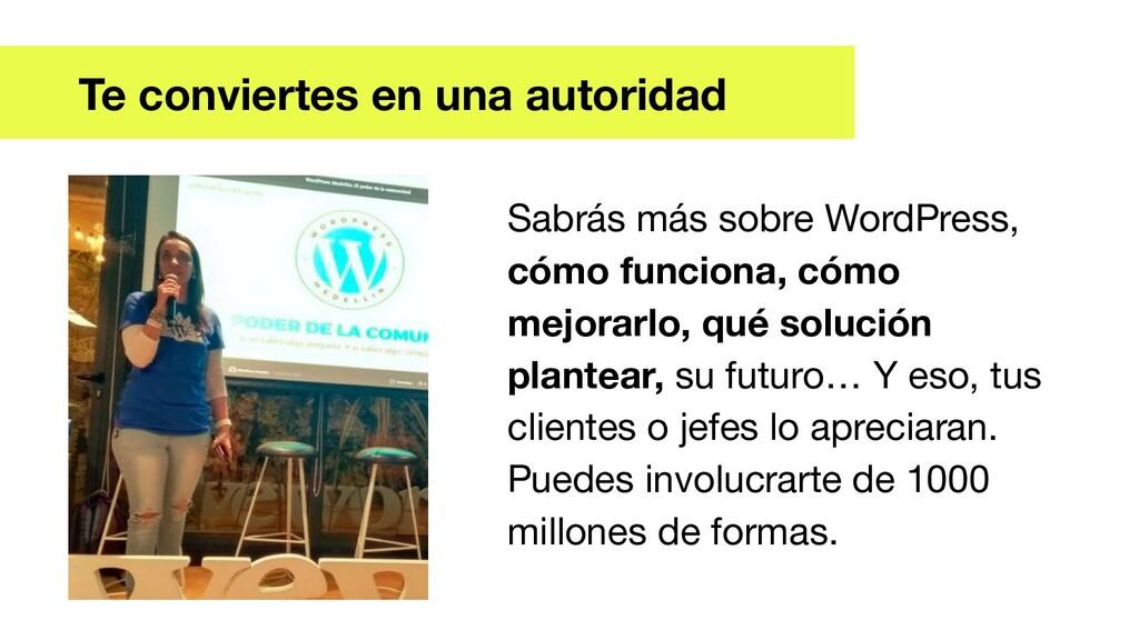 Sabrás más sobre WordPress, cómo funciona, cómo...