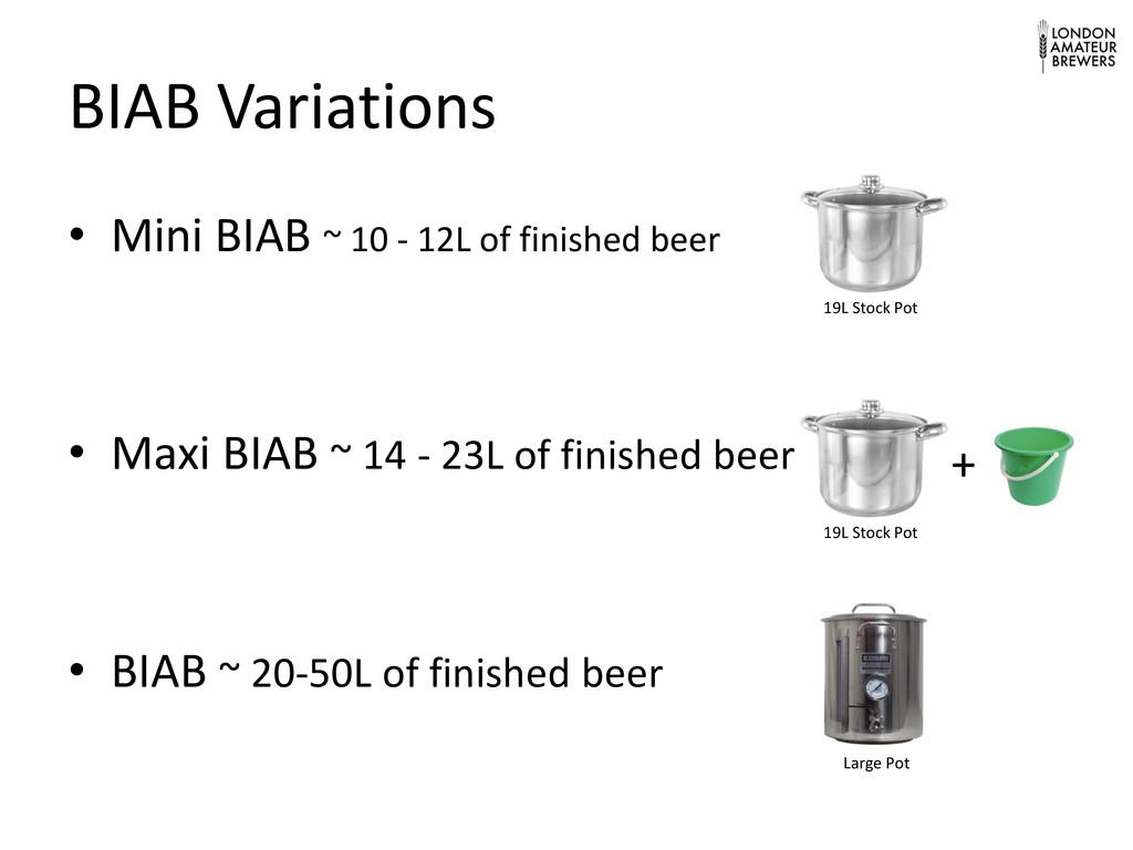 BIAB Variations • Mini BIAB ~ 10 - 12L of finis...