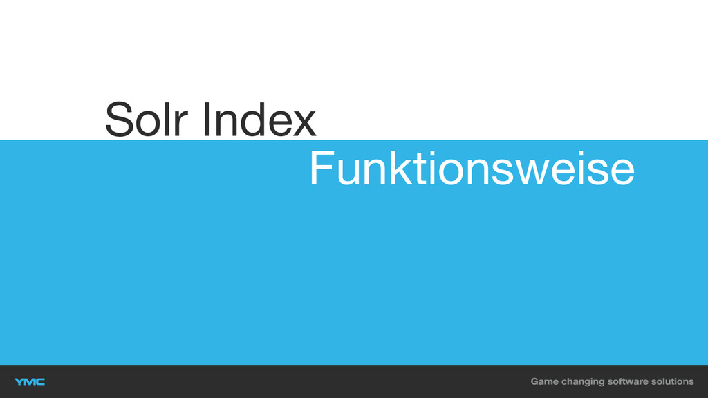 Funktionsweise Solr Index