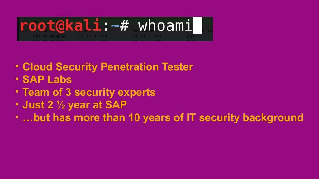 • Cloud Security Penetration Tester • SAP Labs ...
