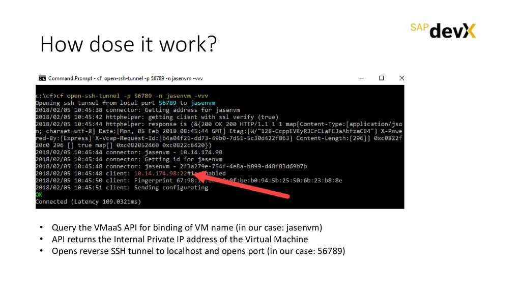 How dose it work? • Query the VMaaS API for bin...