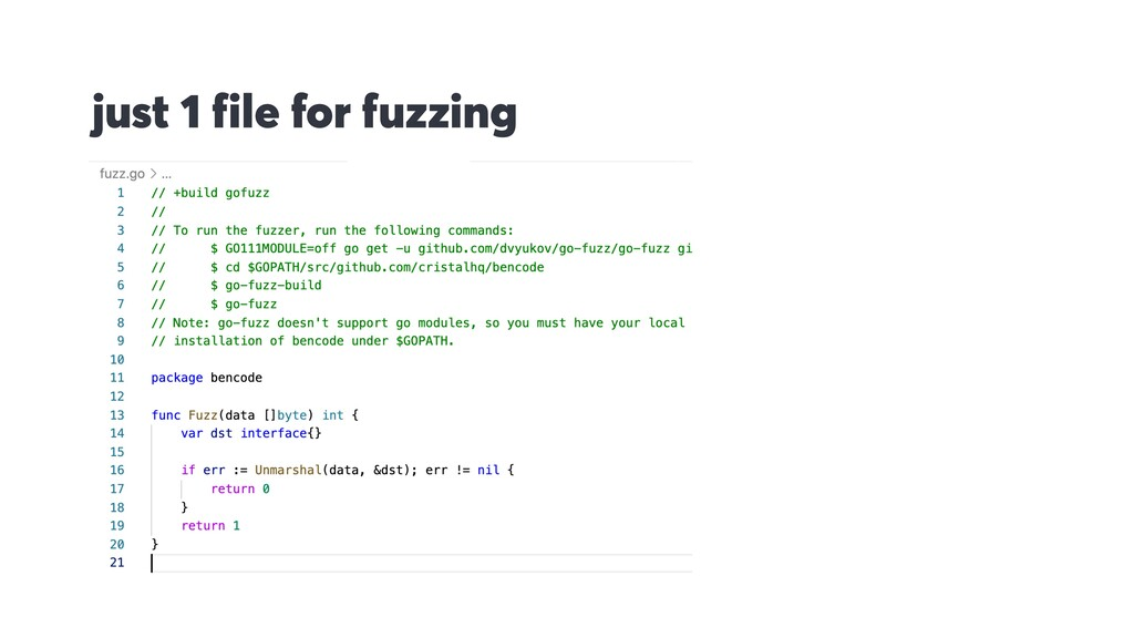just 1 file for fuzzing
