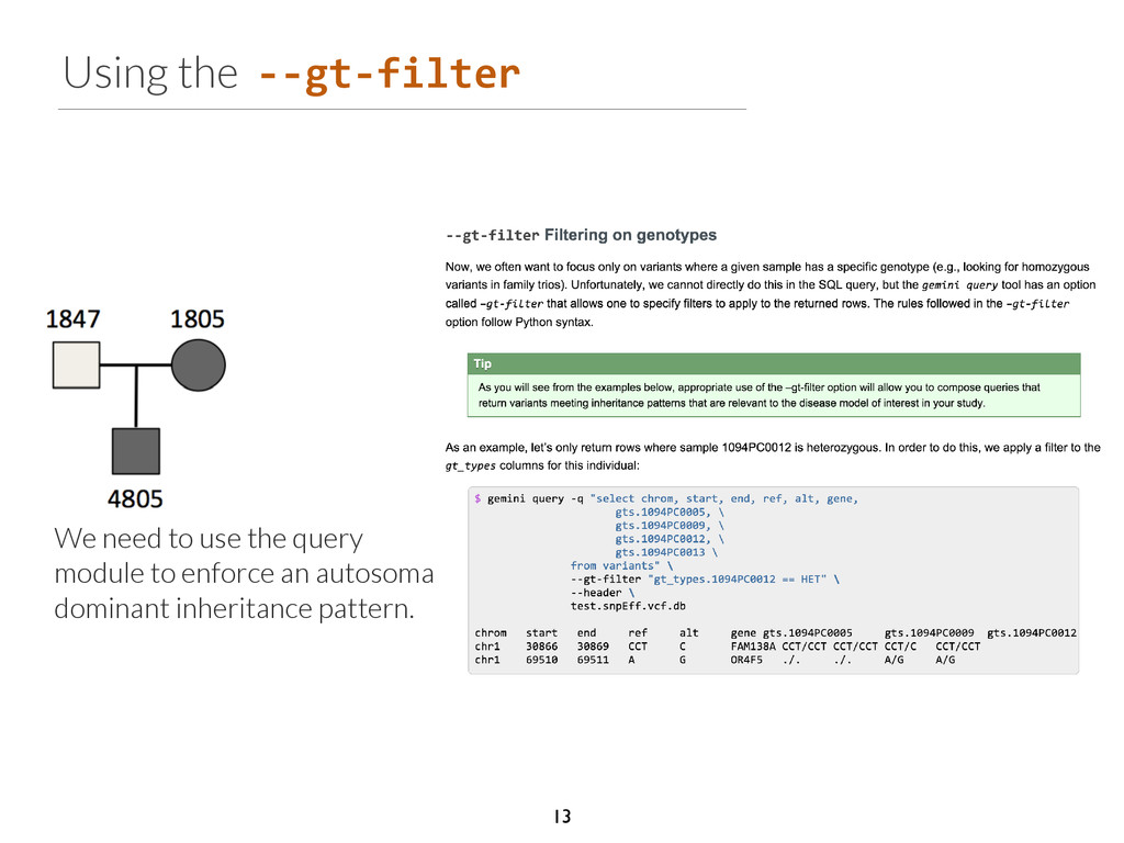 Using the -­‐-­‐gt-­‐filter We need to use the ...