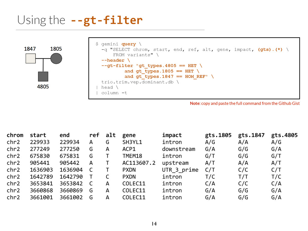 Using the -­‐-­‐gt-­‐filter Note: copy and past...