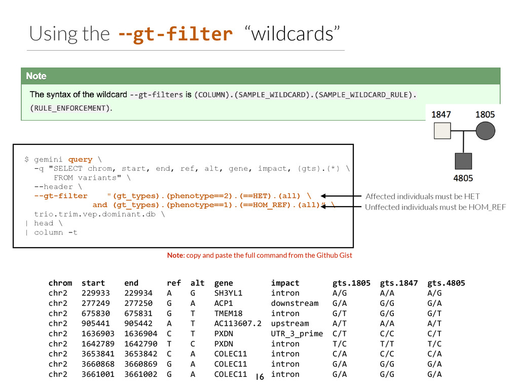 Using the --gt-­‐filter	