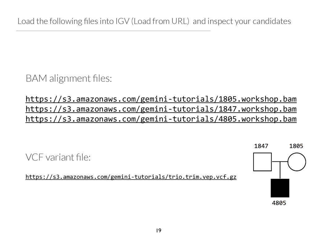 Load the following files into IGV (Load from URL...