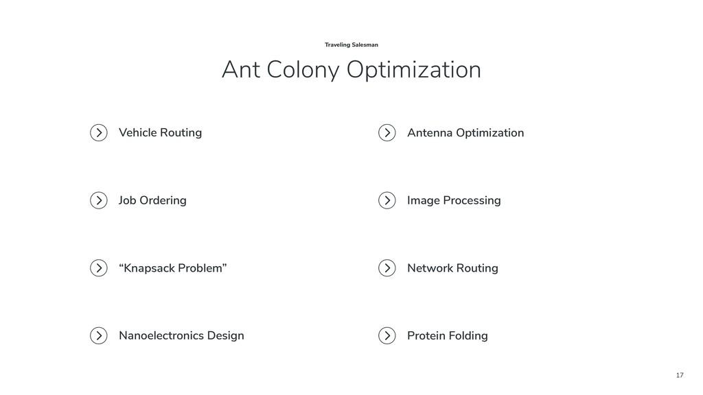 17 Ant Colony Optimization Traveling Salesman V...