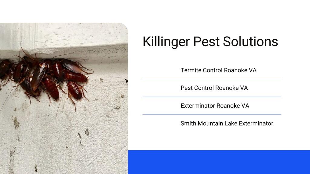 Killinger Pest Solutions Termite Control Roanok...