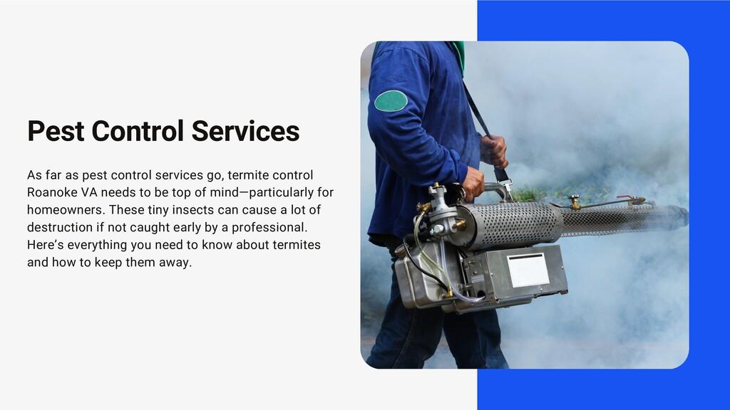 As far as pest control services go, termite con...