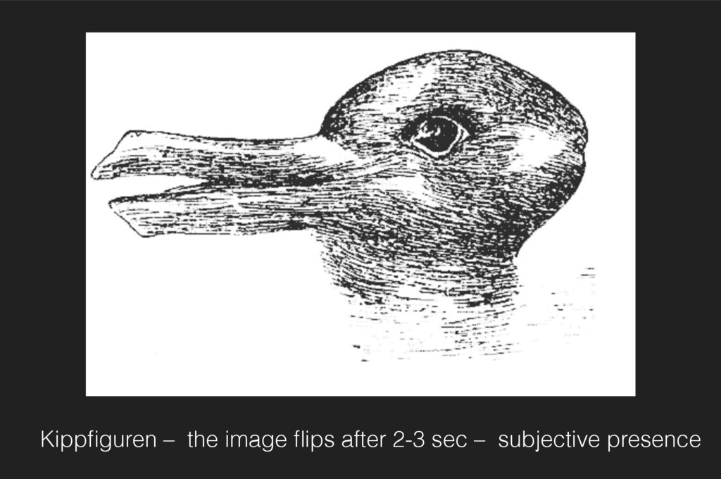 Kippfiguren – the image flips after 2-3 sec – sub...