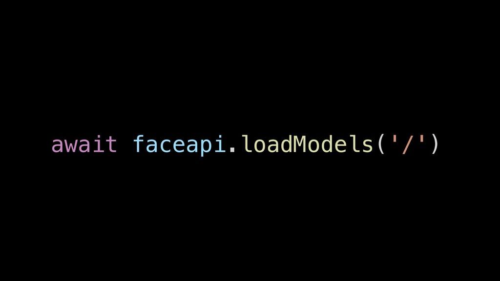 await faceapi.loadModels('/')