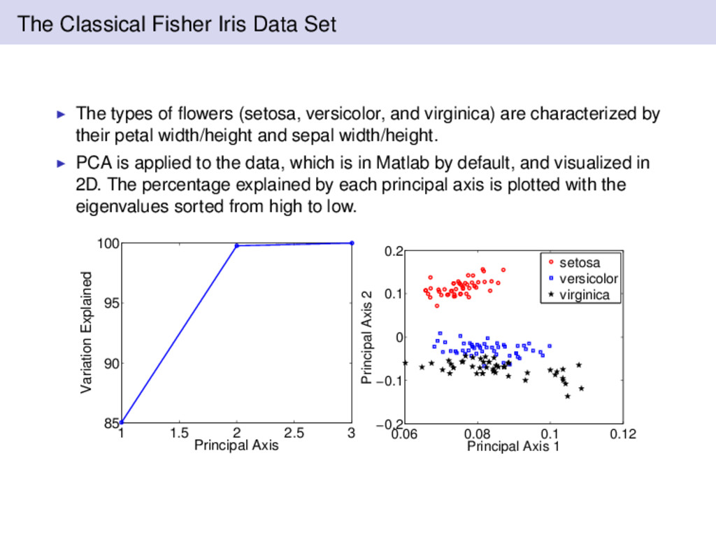 The Classical Fisher Iris Data Set The types of...