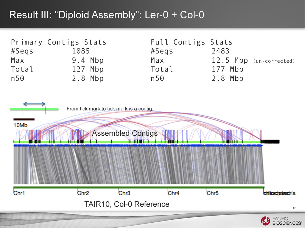 """Result III: """"Diploid Assembly"""": Ler-0 + Col-0 1..."""