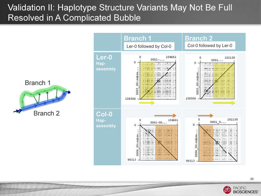 Validation II: Haplotype Structure Variants May...