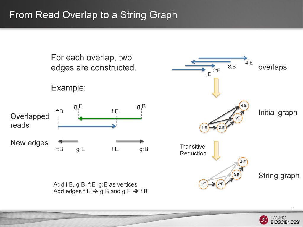 From Read Overlap to a String Graph 3 Add f:B, ...
