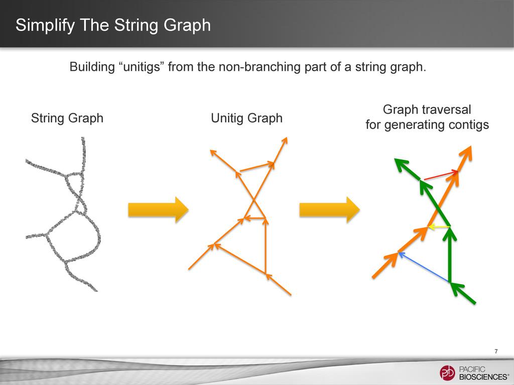 "Simplify The String Graph 7 Building ""unitigs"" ..."
