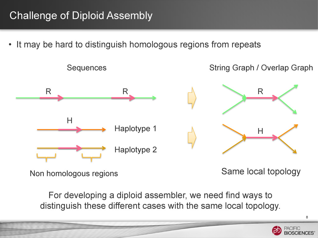 Challenge of Diploid Assembly • It may be hard...