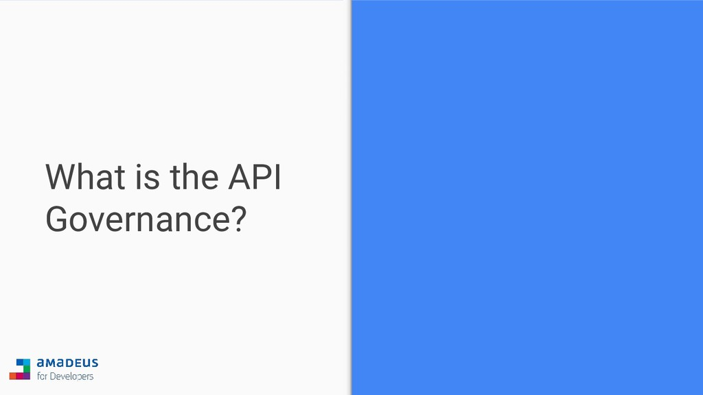 What is the API Governance?